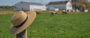 Amish Farm Hat