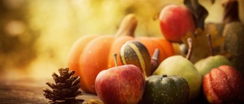 Autumn Fruit/Gourds